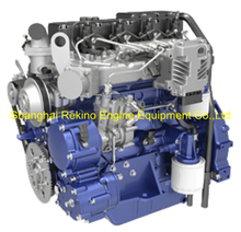 Weichai WP3.2G50E341 construction diesel engine 50HP 2200RPM for forklift